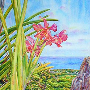 """Limited edition giclee print on watercolor paper: 18"""" x 13"""" - $200 USD; 12"""" x 8 5/8"""" - $135 USD"""